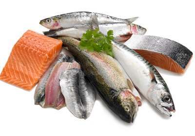 buy-fresh-fish